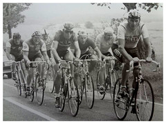 Scottish Vets R.R., Braehead. (Paris-Roubaix) Tags: veterans bicycle racing don smith hugh donald john montgomery jim mccartney jack connor jnr tiger thomson chryston wheelers carluke road race