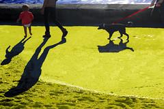 La famiglia (meghimeg) Tags: 2018 rapallo mare sea acqua ombra sole shadow sun bimbo child famiglia family passeggiata walk giallo yellow