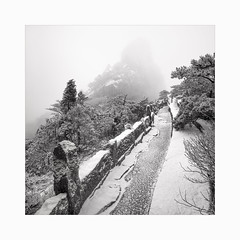 The very first snow (Frans van Hoogstraten) Tags: huangshanmountain anhui snow glazedfrost mountain mist cold ice winter china blackandwhite blackwhite landscapephotography leica m10p zeissbiogon21mmf45