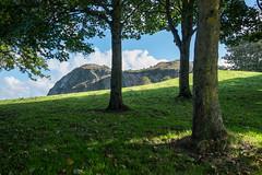 South West Coast Path - Ilfracombe to Combe Martin (Spannarama) Tags: coastpath southwestcoastpath blueskies sunshine clouds coast northdevon devon uk hillsborough ilfracombe trees grass hills