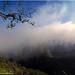 La Gomera 2018 - Nationalpark Garajonay
