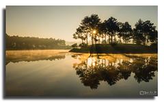DSC_2100 Ban Ang Lake (Yellow Autumn) Tags: