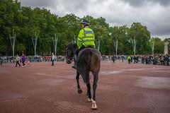 DSC_0321 (sarnovphoto) Tags: london uk unitedkingdom buckinghampalace royalty hydepark horse police soldier band telephonebox
