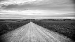 Three Views of a Byway 2 (stevedewey2000) Tags: wiltshire salisburyplain landscape byway track road oldroad skyscape blackandwhite desaturated dxofilmpack dxo bw sonya3000 pentax11018mm