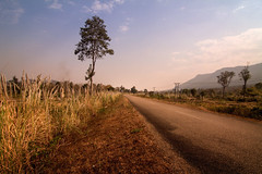Road, Laos (pas le matin) Tags: road route grass herbe tree sky arbre ciel travel voyage perspective world 7d canon7d canon canoneos7d eos7d asia laos lao asie southeastasia