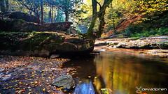 serenity in nature / 1611180475 (devadipmen) Tags: autumn bursa canon landscapephotographer naturephotographer suuçtuwaterfall suuçtuşelalesi türkiye woods istanbul