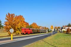 Lxd2-364 (Radosław Matysek) Tags: lxd2 lxd2364 narrow gauge diesel górnośląskie koleje wąskotorowe miasteczko śląskie polska poland