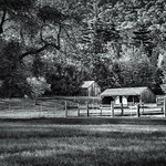 Sheds in the meadow thumbnail