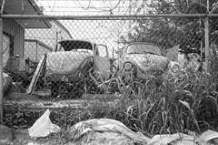 000940640007 (alexdotbarber) Tags: 1500 20 35mm beetle ilforddelta100 minox35gt vw volkswagen analog blackandwhite expiration072017 f8 fence zonefocus