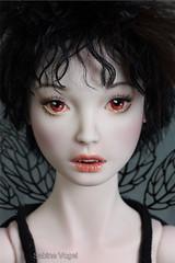 Species nox (SabineVogel) Tags: sabine vogel porcelain doll bjd vampir