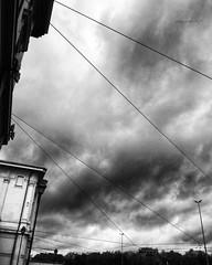 """SPIDERMAN, SPIDERMAN, DOES WHATEVER A SPIDER CAN..."" -40 #artcontemporary #urban #photography #photographer#fotografiaartistica#photooftheday #photographers #artphotography#fotografia#photoart#photo #city #arte #artecontemporanea #arteconcettuale #concep (paolomarianelli) Tags: city paolomarianelli artphotography artwork urbexphotography photographers spiderman arteconcettuale urbex web photooftheday conceptualartgallery fotografiaartistica artistcommunity arte artecontemporanea artcontemporary artcritic photography artist urban photo artgallery photoart urbexphot fotografia photographer curator"