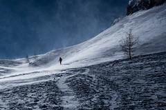 la salita (anna barbi) Tags: neve scialpinismo devero cazzola