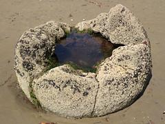 Hollow Moeraki boulder with puddle (Victor Engmark) Tags: rock boulder moeraki newzealand beach outdoor concretion