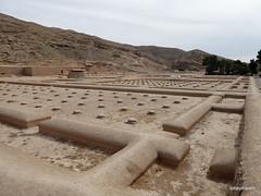005 Hundred Column Hall (Sedsetoon), Persepolis  (35).JPG (tobeytravels) Tags: artaxerxes xerxes ahurmazda alexanderthegreat