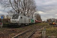 BB75008 + BB(4)75053 + trémies - MA100 - Train n°73693 Gennevilliers > Thouars (nicolascbx) Tags: bb75000 bb75008 bb75053 prima alstom siemens akiem fret freight freighttrain écorail gennevilliers portdegennevilliers thouars train 73693