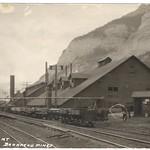Plant Bankhead Alberta 1921 thumbnail