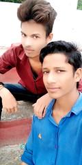koli image
