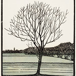 Bald tree (1919) by Julie de Graag (1877-1924). Original from the Rijks Museum. Digitally enhanced by rawpixel. thumbnail