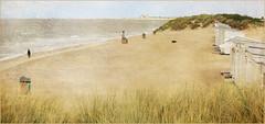 Dans les dunes de Knokke, Belgium (claude lina) Tags: claudelina belgium belgique belgië knokke merdunord noordzee plage sable beach cabines dunes oyats