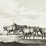 Group of six bulls by Jean Bernard (1775-1883). Original from The Rijksmuseum. Digitally enhanced by rawpixel. thumbnail
