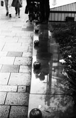 丸は知らない (spheres don't know) (Dinasty_Oomae) Tags: ウェルタ ウェルティニ welta weltini 白黒写真 白黒 monochrome blackandwhite blackwhite bw outdoor 東京都 東京 tokyo street 港区 minatoku 表参道 omotesando 反射 reflection 石 stone