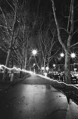 Two night-joggers in Stuttgart (andreasmaurer89) Tags: leicam3 leica m3 ilford panf iso50 voigtländercolorskopar21mmf4 voigtländer 21mm f16 f22 night blackandwhite rodinal rodinal1100 longtermexposure film analog schwarzweis monocrom stuttgart badcannstatt
