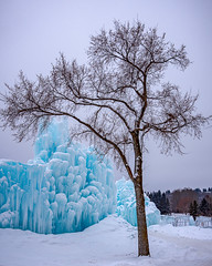 _SSS2224-Edit.jpg (S.S82) Tags: edmonton icecastle landscape winter nature alberta canada snow travelphoto travelalberta ss82 cold landscapephotography keepexploring landscapecaptures travelworld ca unlimitedcanada