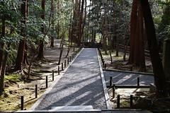 SDQ_1260 (koyaman3422) Tags: 京都 kyoto sigma sdquattro 1770mm 法然院