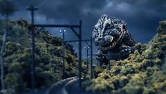 Godzilla 1962 (MyKaijuGodzilla.com) Tags: godzilla xplus kingoji ゴジラ エクスプラス キンゴジ