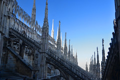 On the shady side (Thomas Roland) Tags: shade shadow blue blå spire roof rooftop morning europe travel efterår autumn herbst 2018 nikon d7000 europa city by milan milano cathedral katedral duomo church kirche kirke building tourists tourism italy italia italien façade carving sky himmel