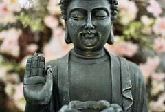Mudra (Jetcraftsofa) Tags: nikonf3 nikkor5014 sunpaksr20flash kodak proimage100 35mm slr filmphotography flashphotography craftstore flowers buddha shakyamuni mudra hana dof bokeh swirly statue zazen meditation samadhi michaelschallenge
