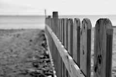 Wooden fence on beach (jaume zamorano) Tags: blackandwhite blancoynegro blackwhite blackandwhitephotography blackandwhitephoto bw catalunya cambrils costadaurada d5500 fence beach lines monochrome monocromo nikon noiretblanc nikonistas pov platja playa plage street streetphotography streetphoto streetphotoblackandwhite streetphotograph