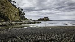 Clydes Island #1, Eaglehawk Neck, Tasman Peninsula-1 (Tasmanian.Kris) Tags: tasmanpeninsula beach rockpooling rockpool tasmania australia