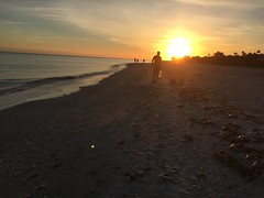 Sanibel - Captiva Island
