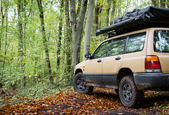 DSC_0149 (ALNSM_VISUAL) Tags: subaru forester overland overlanding bound offroad softroad softroading rooftoptent sf5 forest fall automn dead leafs nature outdoor outdoorlife vanlife roadtrip wild wilderness 4x4 4wd awd suv djebel line alnsm