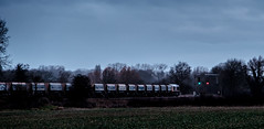 Winter gloom (Peter Leigh50) Tags: gbrf class 66 shed freight farmland countryside railway railroad rail rural train trees sky winter cold sleet rain weather wet fujifilm fuji xt2