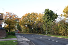 DSC_2242 (PeaTJay) Tags: nikond750 reading lowerearley berkshire gardens outdoors flora fauna plants flowers trees bushes