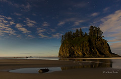 Chasing low tide (D. Inscho) Tags: lapush pacific ocean water pacificnorthwest washingtoncoast washington seastack night stars reflection moonlight