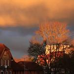 Morgenlicht (02) thumbnail