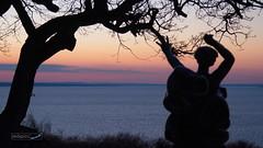 (zedspics) Tags: fonyód balaton magyarország hungary hongarije sculpture sunset sundown nature zedspics plattensee winter january 1901 explore explored