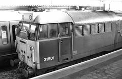 31601 (R~P~M) Tags: train railway diesel locomotive engand uk unitedkingdom greatbritain 31 aylesbury bucks buckinghamshire