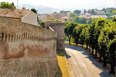 the wall......... (atsjebosma) Tags: corinaldo marche italy city wall muur old oud trees summer atsjebosma stad
