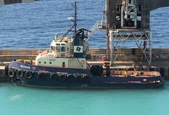 Pelican II (Gerry Hill) Tags: caribbean windward leaward sea ocean marella tui explorer pelican ii tug imo 9044815 bridgetown barbados
