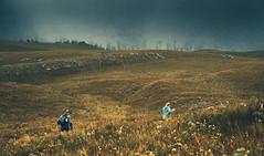 Mount Donaldson Trail, Tasmania