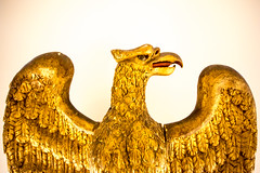 Powerful (Thomas Hawk) Tags: america california sanfrancisco usa unitedstates unitedstatesofamerica bird eagle fav10