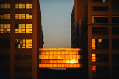 Holding Your Hand as the Sun Sets on New York (Thomas Hawk) Tags: america brooklyn nyc newyork newyorkcity usa unitedstates unitedstatesofamerica architecture sunset fav10 fav25 fav50
