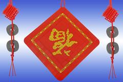 Upside Down Fu (Brick.Ninja) Tags: cnymoc2019 lego china chinese chinesenewyear lunarnewyear yearofthepig pig fortune luck newyear fu