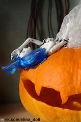 . (Elina-Doll) Tags: art авторскиекуклы collectionfigures collectiontoys halloween høst höst herbst осень doll кукла авторскаякукла strange blauhaare bluehair blåtthår collectionfigure дизайнерскиекуклы куклы искусство pumkin странное нестандартное художественныекуклы blue blau blå artdoll
