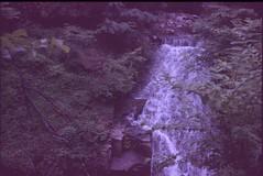 (✞bens▲n) Tags: leica m4 kodak elitechrome 400 rokkor 40mm f2 film analogue slide expired japan saitama waterfall water