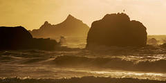 Golden Waves, Golden Seascape (milton sun) Tags: rockawaybeach sanmateo northerncalifornia dusk seascape bay ngc bayarea wave ocean shore seaside coast westcoast pacificocean landscape outdoor clouds sky water rock mountain rollinghills sea sand beach cliff nature sunset highway1
